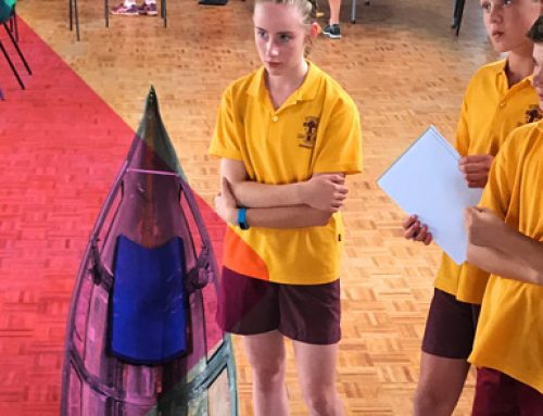 St Therese's Primary students learn from seasoned Catholic College Bendigo campaigners